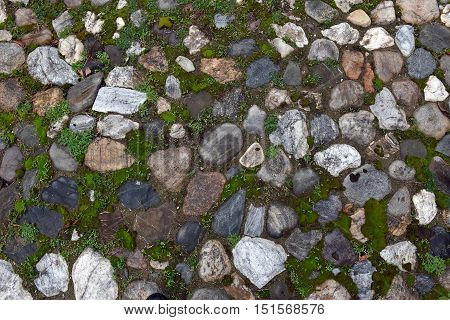 Old cobblestone pavement background with growing grass