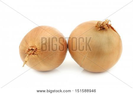 two big brown onions on a white background