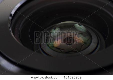 Lens Of Photo Camera (objective)