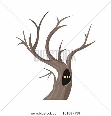 Isolated oak tree without leaves. Bare oak tree with hollow. Two eyes of an animal looking from hollow. Tree forest, leaf tree isolated, tree branch, plant eco branch tree. Autumn tree without leaves