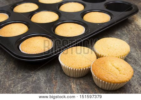 Cooling fairy cakes freshly baked in the tray