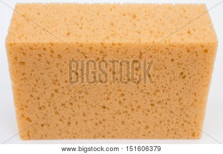 Close up of a sponge, detail, background, isolated on white