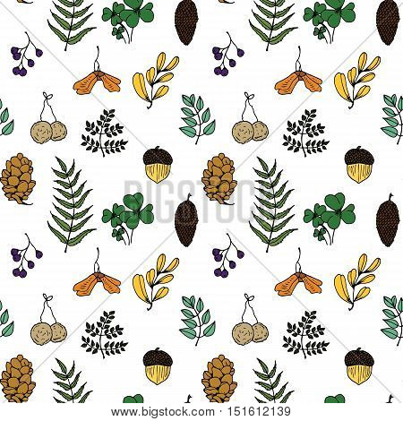 Nature Illustration. Natural Materials. Forest Postcard. Forest Fruits, Leaves, Branches. Seamless P