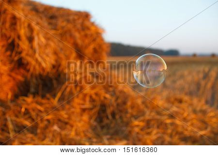 Soap bubble floating in the air. Flying soap bubble on the grass field background. Agriculture field after harvest
