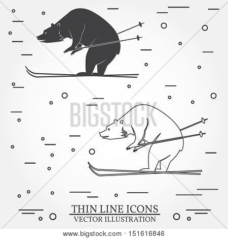 Set of skiing bear icons. Set include silhouettes and thin line icons . Winter icons for family vacation, activity or travel. For logo design, patches, seal, logo or badges. Skiing bear thin line icon.