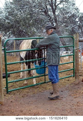 Man holds reaches through gate to pet his horse. It is winter and snow is falling in New Mexico. He has on a hat and boots.