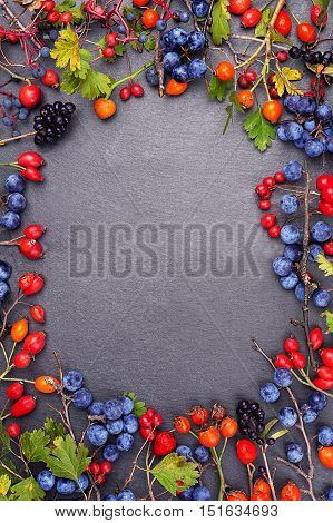 Frame with wild berries on a slate board with copy space