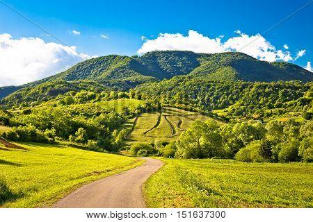 Springtime landscape on Plesivica hills Zumberak Croatia