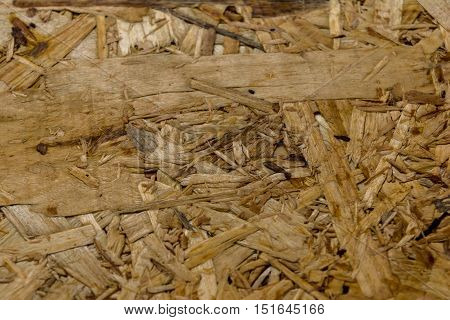 Pressed wood texture. Chipboard. Texture background. Close-up.