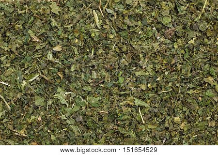 Healthy food healing herbs alternative herbal medicine concept. Food background of green dried nettle leaves