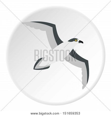 Seagull icon. Flat illustration of seagull vector icon for web design