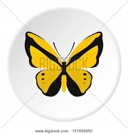 Yellow butterfly icon. Flat illustration of butterfly vector icon for web design