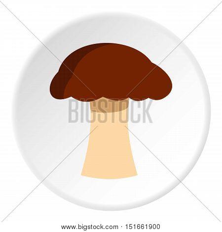 Mushroom icon. Flat illustration of mushroom vector icon for web