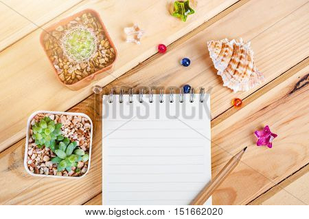 Open notebook for your text and cactus with decoration on wooden background.