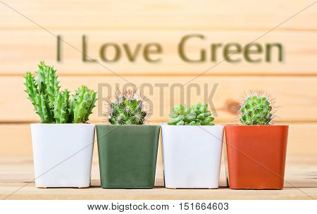 Different succulents and cactus in pots with I love green on light wooden background
