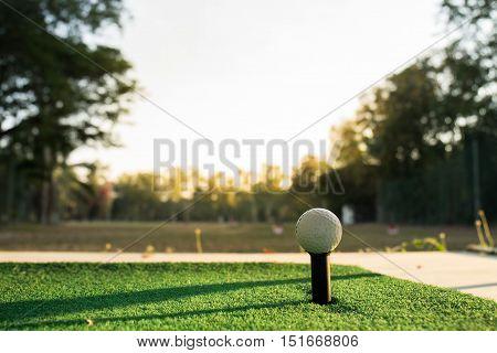 a golf ball in a green grass