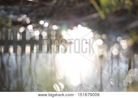 glare bokeh in water of rural pond