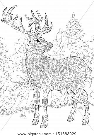 Stylized deer (stag buck christmas reindeer) among woodland landscape. Freehand sketch for adult anti stress coloring book page with doodle and zentangle elements.