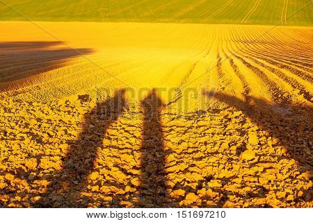 Shadow of a men on a brown plowed field at sunset