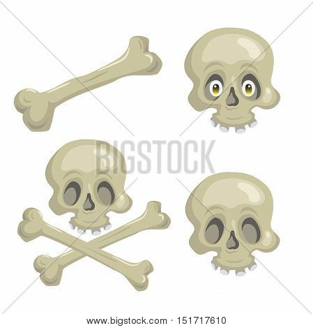 Cartoon scull set with crossbones and eyes. Trendy pirates and halloween party vector icon.