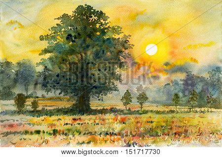 Watercolor landscape original painting colorful of rice field in countryside and emotion in sunset background