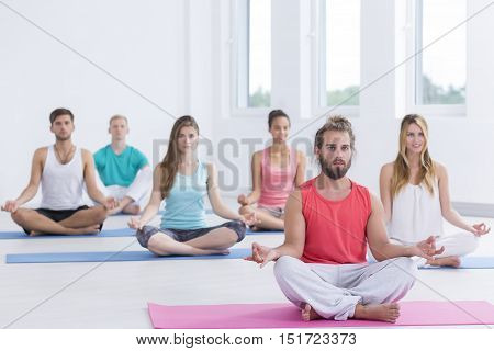 Group Of Yoga Practitioners