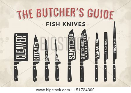 Fish cutting knives set. Poster Butcher diagram and scheme - Fish Knives. Set of butcher fish knives for butcher shop and design butcher themes. Vintage typographic hand-drawn. Vector illustration