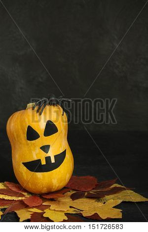 Halloween pumpkin with scary face ruber spider and autumn leaves on dark background vertical orientation