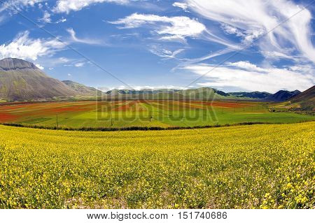 This release runs with a Fisheye optics, portrays the whole the Castelluccio di Norcia plateau, boasting an area of well 15Kmq, consisting of the Pian Grande and Pian Perduto famous for (Fiorita) ie an impres