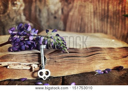 composition with old retro books on a wooden table