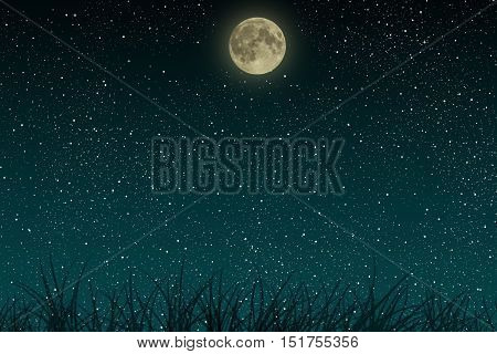 Beautiful blue night starry sky with full moon and growing grass.