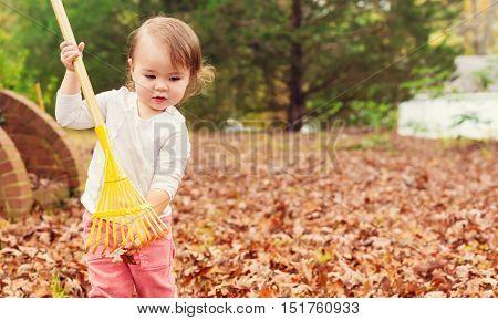 A toddler girl raking leaves in autumn