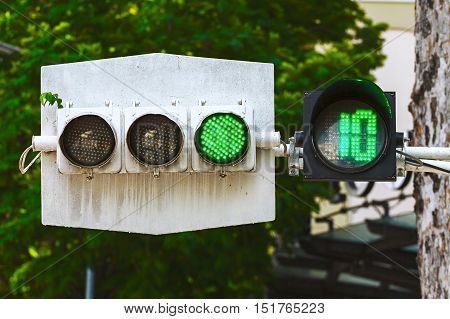 Traffic light with a green signal on the background of tree foliage.