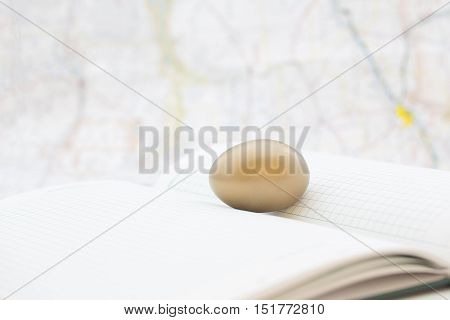 Gold egg placed on ledger with map behind reflects strongsuccessful global investments