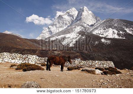 Mount Ama dablam, khumbu himal Everest region Nepal