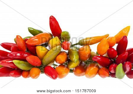 Composition of colorful decoration peppers isolated on white background close up