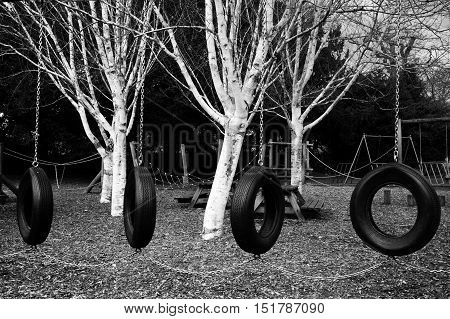 Swings made of tyres in a playground. In black and white.
