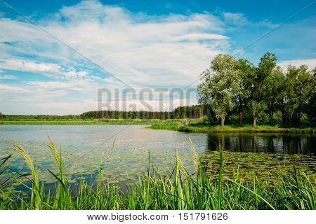 Summer beautiful river landscape in the countryside. Nobody
