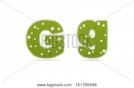 Natural Green Grass With Camolines Font. Letters G G