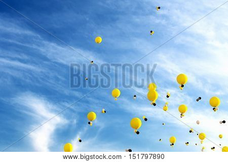 The Helium balloons in the blue sky