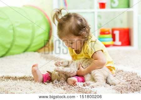 Child girl holding cat kitten on the floor