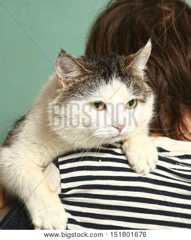 close up photo of tom cat on boys shoulder