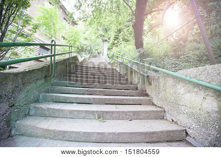 Green and Grey Staircase with trees and sun shining through
