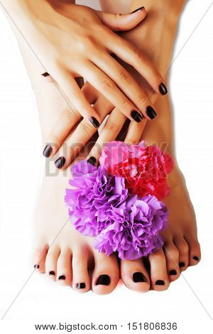 manicure pedicure with flower close up isolated on white perfect shape hands spa salon, modern dark mani pedi concept