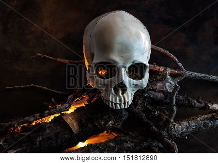Halloween human skull with wood fire - conceptual