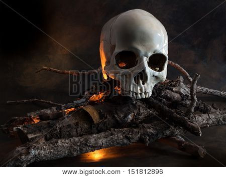 Human skull on wood fire - conceptual