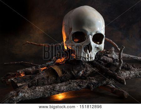 Human skull on wood fire - conceptual