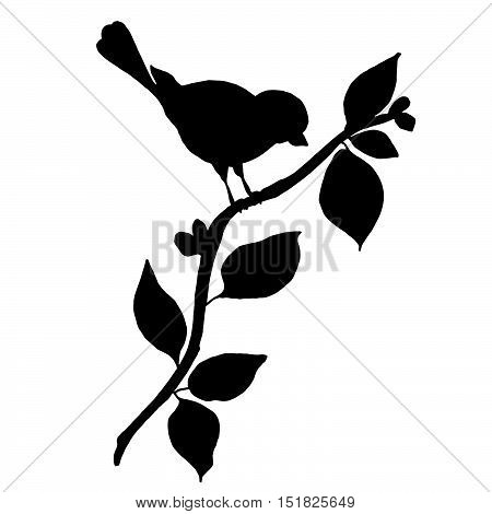Birdie silhouette on a tree branch with leaves isolated on white background. Hand drawn graphics illustration for prints, design, cards, invitations.