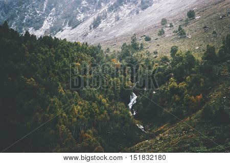 Autumn Coniferous Forest and river Landscape aerial view Travel serene scenic view moody weather
