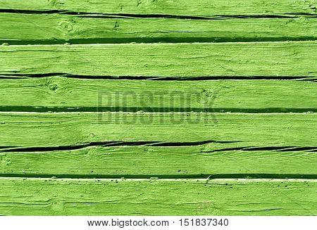 Light Green Color Log House Wall.
